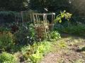 903-bates-garden-2