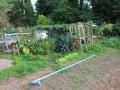 903-bates-garden
