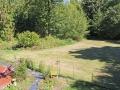 125-Ricky-Backyard